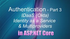 Authentication Part 3, IDaaS & multiple login providers in ASP.NET Core 5